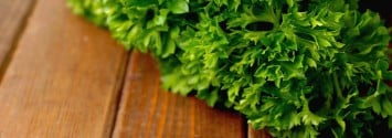 Compound in Parsley Among 'Most Potent Anti-Cancer Compounds'