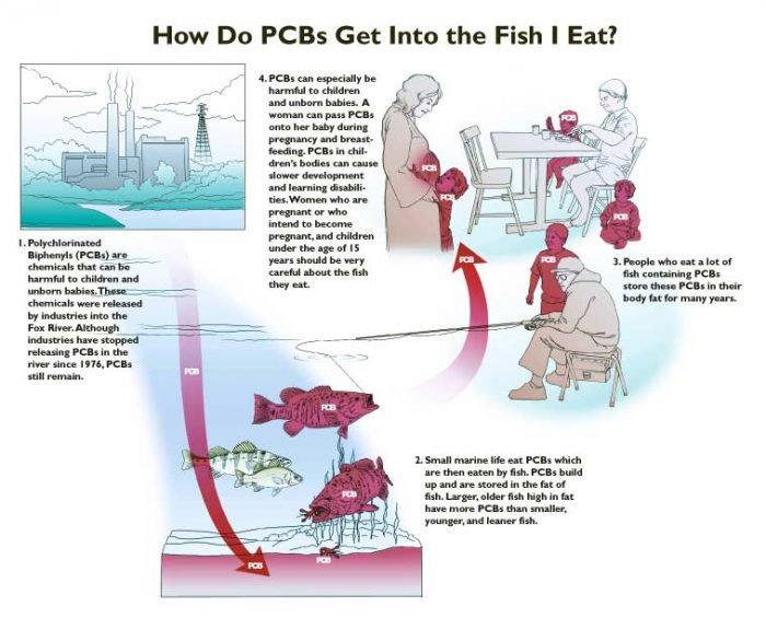 pcb-cycle