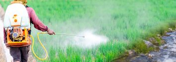 Even Legal Levels of Glyphosate Herbicide may Harm Freshwater Ecosystems