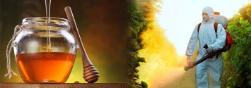Uh Oh: FDA Finds Glyphosate Herbicide in U.S. Honey