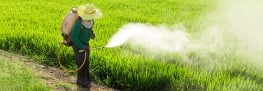 Pesticides Linked to Brain Cancer in Children