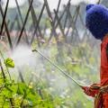 pesticides-man-spraying-735-350