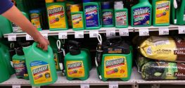 California Judge Tentatively OKs Roundup Cancer Warning Label