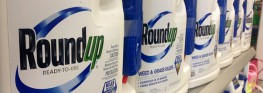 Ding Ding! EU Committee Votes AGAINST Renewal of Glyphosate Herbicide