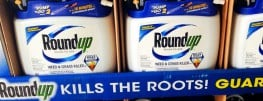 California's Cancer-Label on Monsanto's Roundup to 'Come Within 30 Days'