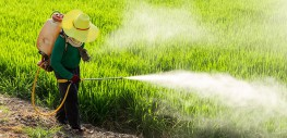 "New Study: Pesticides a ""Major Cause"" of Infertility, Male Erectile Dysfunction"