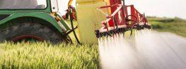 EPA Won't Ban Chlorpyrifos Pesticide Despite Proof that It's Dangerous