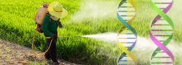 New Monsanto Chemical Silences Genes to Kill Bugs: Will They Silence Yours, Too?