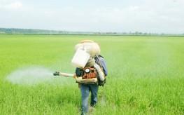 USDA: Monsanto's Roundup Herbicide Damages Soil