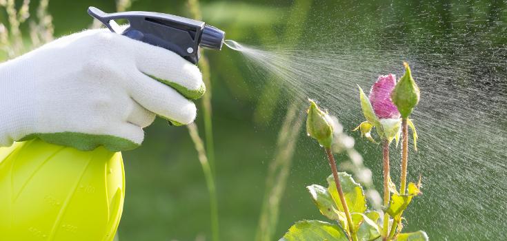 pesticides_bottle_735_350