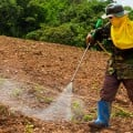 pesticides_herbicide_man_spray_735_255-2