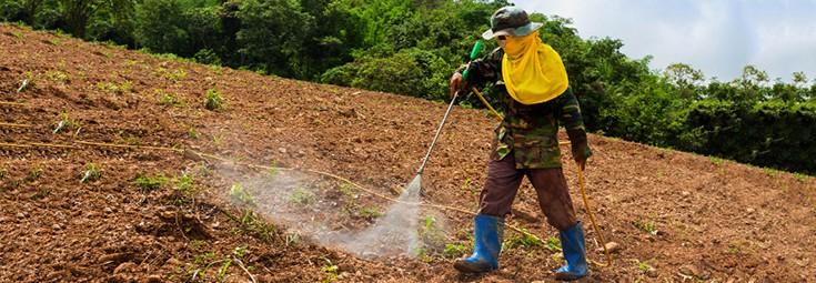 pesticides_herbicide_man_spray_735_255-2