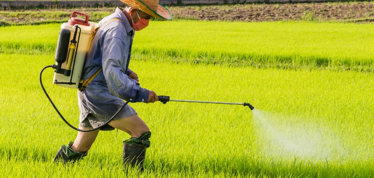 pesticides_man_spraying_field_735_350