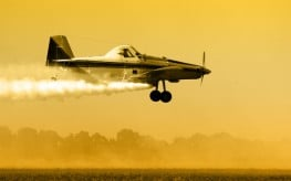 pesticides plane