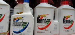 WHO Full Report: Monsanto Herbicide in GMO Crops is Carcinogenic