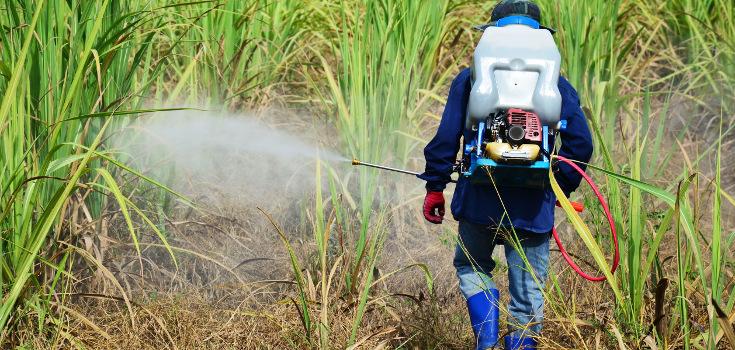 pesticides_spray_tool_735_350