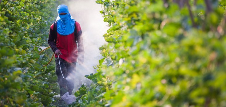 pesticides_spraying_mask_735_350