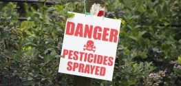 Roundup Chemicals Linked to Cancer of the Lymph System