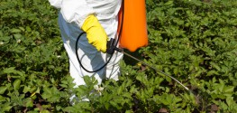 Farmer Blames Monsanto Chemical for His Wife's Cancer