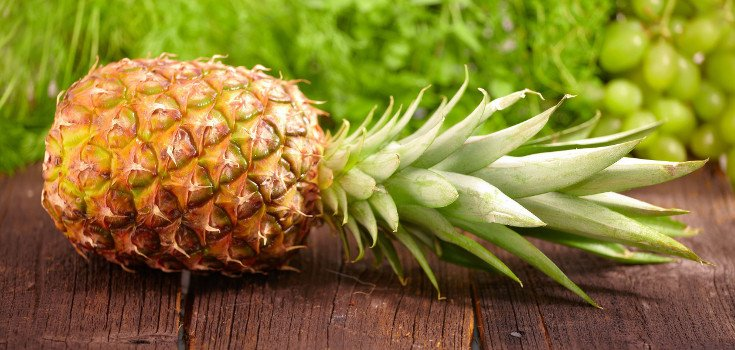 pineapple_fruit_735_350