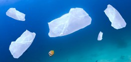 plastic bag polluting ocean