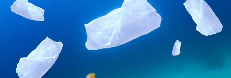 plastic bag polluting ocean