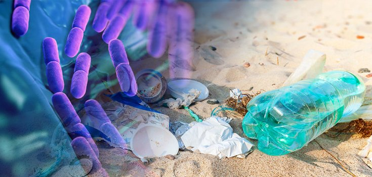 plastic-pollution-bacteria-735-350