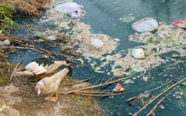 Plasticized ocean photo
