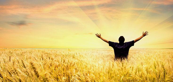 positive-field-crops-happy-735-350