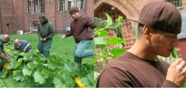 Former Jail Block Turned into Blossoming Organic Garden