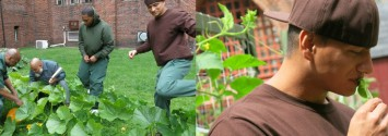 Former Jail Block Turned into Blossoming Organic Garden