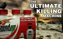 Video: Extensive Research Shows Monsanto's #1 Selling Herbicide Roundup Is Killing You