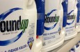 Letter Urges EU to STOP Re-Approval of Glyphosate Herbicide