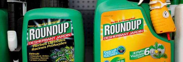 Huge: Monsanto Sues California to Keep Round Up Off Carcinogen List
