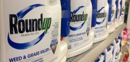 Test Yourself: Are Monsanto's Chemicals In Your Blood?