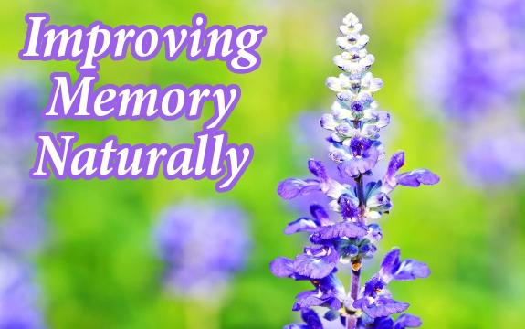 Ways to stimulate memory