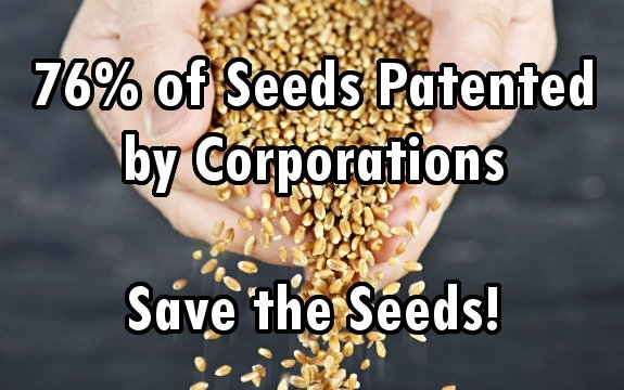 seeds patneted