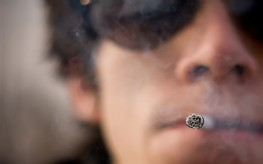 Menthol Cigarette Investigation to be Conducted by FDA