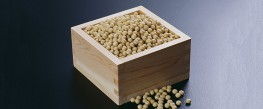 Study: GMO Soy Accumulates Cancer-Causing Formaldehyde