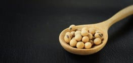 New Study: GMO Soy Accumulates Cancerous Formaldehyde