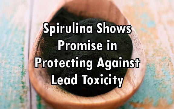 spirulina lead toxicity