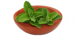 STEVIA: The Ultra-Sweet Sugar Substitute that Isn't Always Natural