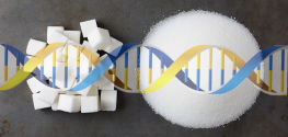 Will Sugar Soon be Genetically Modified to 'Help Fight Skin Cancer?'