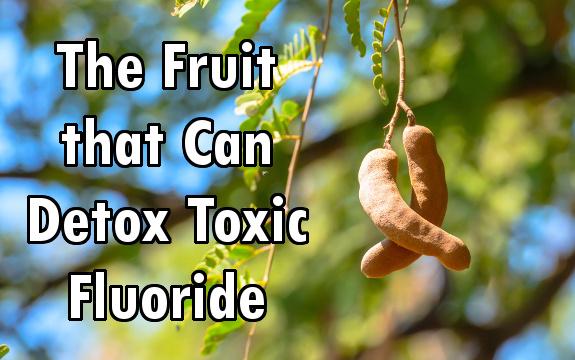 10 Tamarind Health Benefits Detoxing Fluoride Boosting Heart