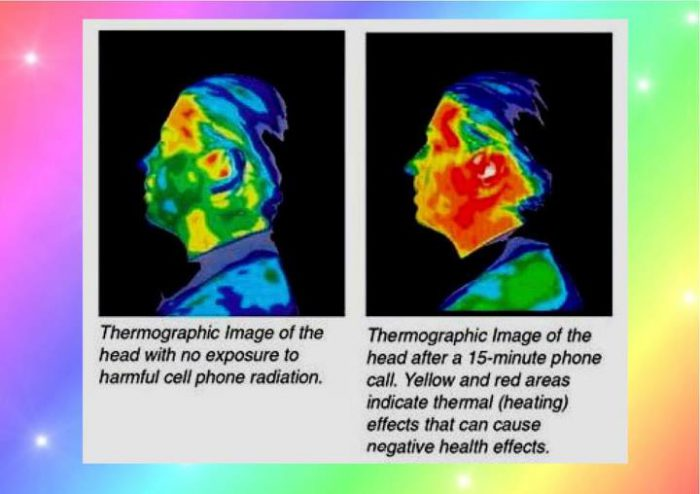 New Rat Study Finds Link Between Cell Phones And Cancer