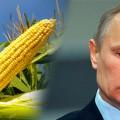 vladimir-putin_crops-corn-735-265