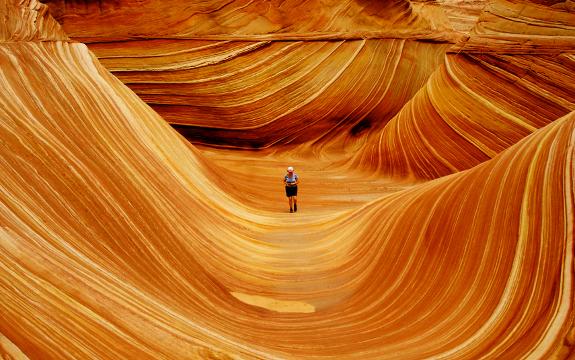 wave_tourist_360