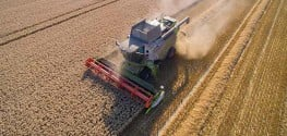 Non-GMO Wheat Yield Surpasses 5-Year-Old World Record