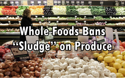 whole foods sludge ban