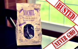 xochitl non-gmo false